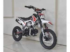Pit Bike 110 SJR Semi Auto Cross